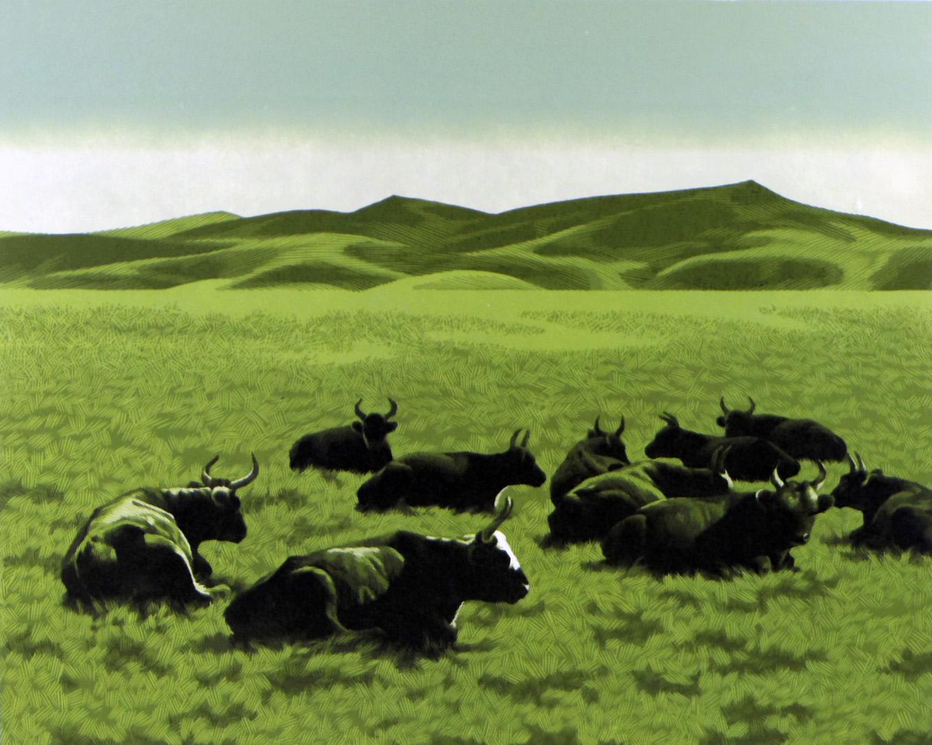 Mongolia-Cows3