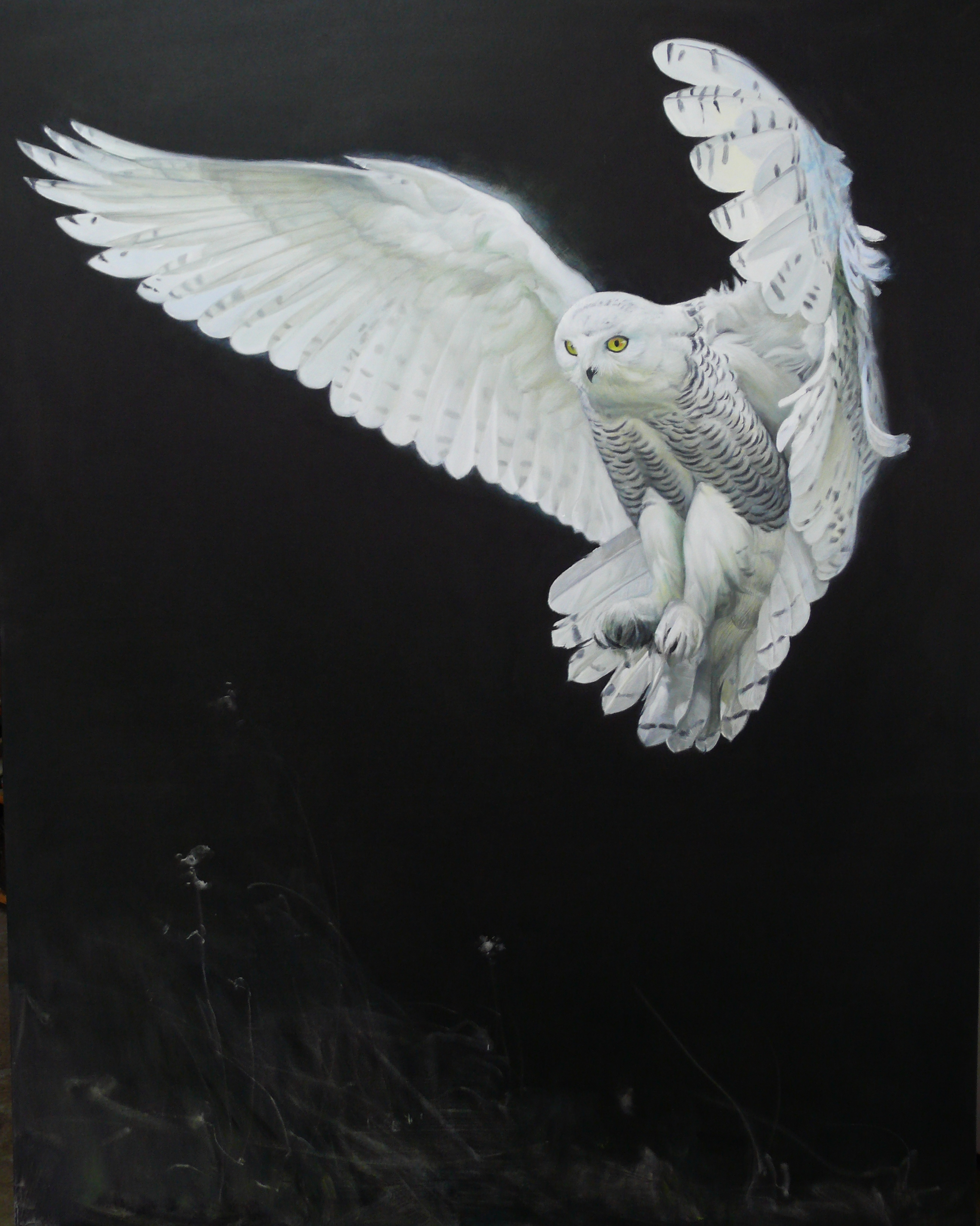 Li Tie - Owl
