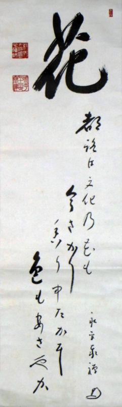 IMGP6999