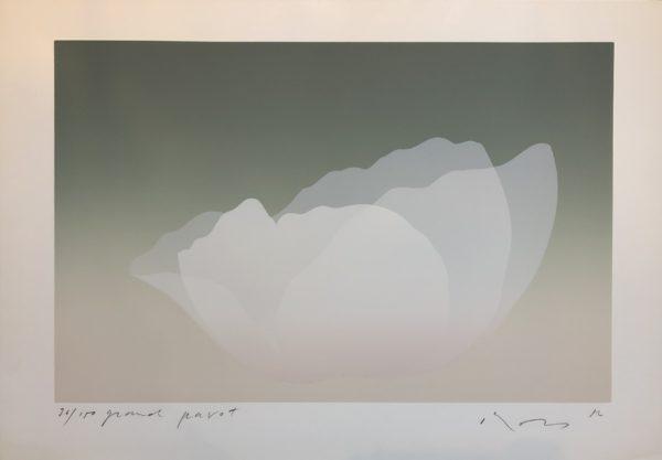14.GrandPavot 1982