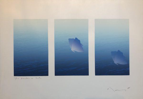 15.FenetreDuMatin 1988